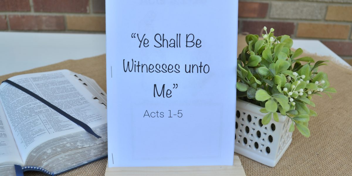 book of acts for kids bible study